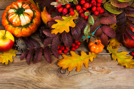 Thanksgiving or fall background with red berries, pumpkins, rowan and oak leaves on the rustic wooden table