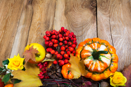 Fall harvest background with decorative pumpkins, apples, red berries and yellow flowers on the rustic wooden table, copy space