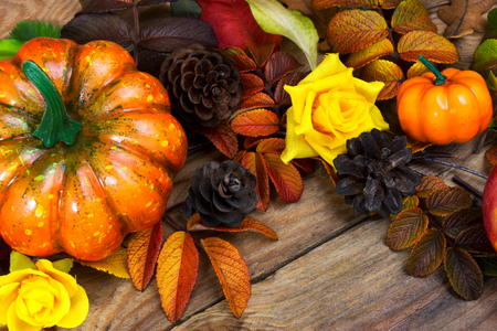Thanksgiving orange pumpkin, pine cones and yellow roses rustic background, close up Stock Photo