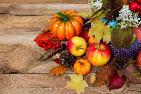 Thanksgiving decoration with red berries, white flowers, pumpkins, apples, cones, acorns, colorful fall leaves and rowan, copy space