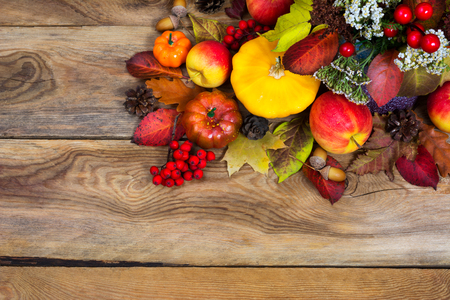 Thanksgiving greeting background with red berries, white flowers, yellow squash, pumpkin, apples, cones, acorns, colorful fall leaves and rowan, copy space