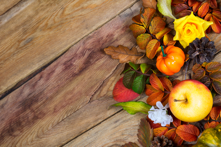 Thanksgiving background with pumpkin, apple, pine cones, red, green and yellow fall leaves, copy space Stock Photo