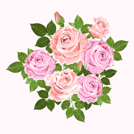 Pink and beige vector roses and green leaves wreath isolated on the white background for floral decoration