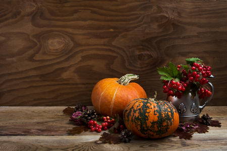 Thanksgiving rustic decor with red viburnum berry in the antique silver kettle, oak leaves, pine cones, and two orange pumpkins, copy space Stock Photo