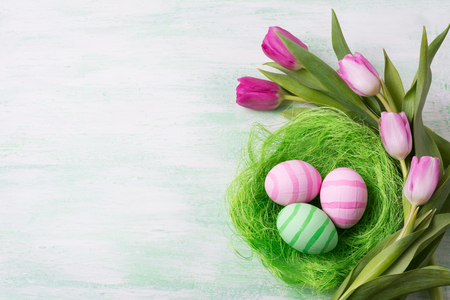 Easter background with green and pink striped painted eggs in the nest and tulips. Happy Easter greeting card, copy space. Stock Photo