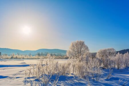 Winter landscape with blue sky, white frozen trees and animal trails tracks on the snow 版權商用圖片