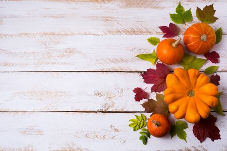 Thanksgiving rustic decor with pumpkins, red and green fall leaves on the white painted wooden table, copy space 版權商用圖片 - 136679475
