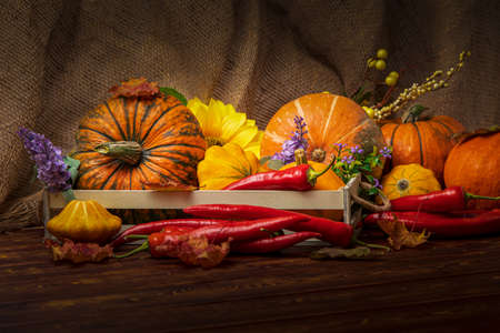 Abundance cornucopia consept with pumpkins, red hot chili peppers, purple flowers, fall leaves on the rustic wooden background
