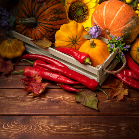 Rustic fall background with pumpkin, red hot chili peppers, autumn leaves for social media