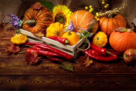 Rustic box with fall vegetables, pumpkin, red hot chili peppers, purple flowers, autumn leaves