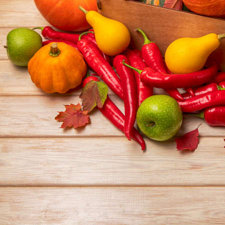 Fall background with yellow squash, pumpkins, red hot chili peppers, green apples and autumn leaves for social media, copy space 版權商用圖片