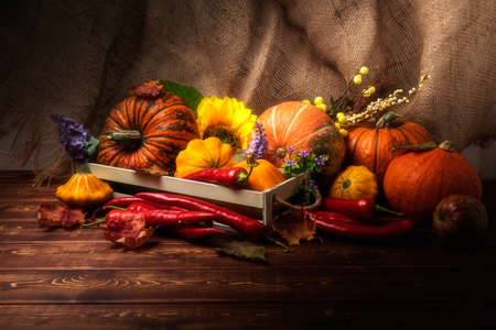 Rustic fall table centerpiece with flowers, pumpkins, red hot chili peppers, green apples, autumn leaves, copy space 版權商用圖片