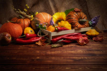 Rustic arrangement with pumpkins, red hot chili peppers, yellow, purple flowers and fall leaves 版權商用圖片