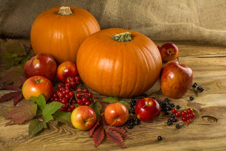 Fall, pumpkins, apple, cranberry, bird cherry, leaves on wooden background