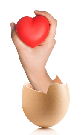 Hand with broken egg isolated on white backround. Heart in the hands Stock Photo