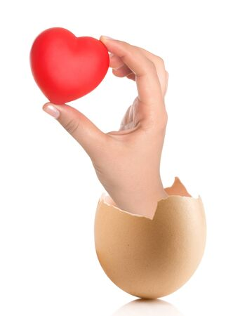 albumen: Hand with broken egg isolated on white backround. Heart in the hands Stock Photo