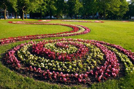 plot: flower bed on grass plot in park