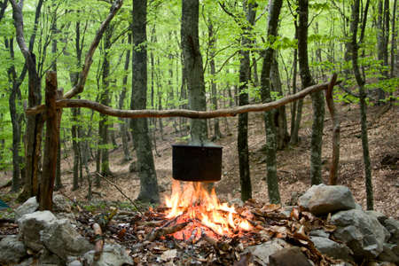 kettle on fire in spring forest