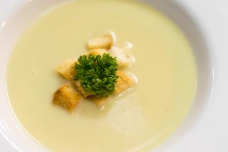 A bowl of creamy cauliflower  Reklamní fotografie