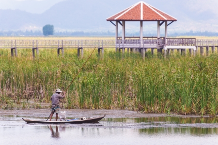 man rowing on swamp field with cat tail reed on the background