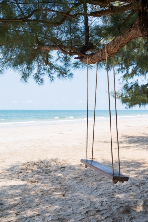 Wooden swing under the tree at the beach photo