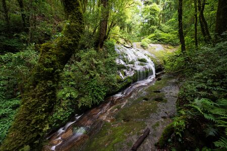 Waterfall in the forest, Giu Mae Pan, Chiang Mai Thailand photo