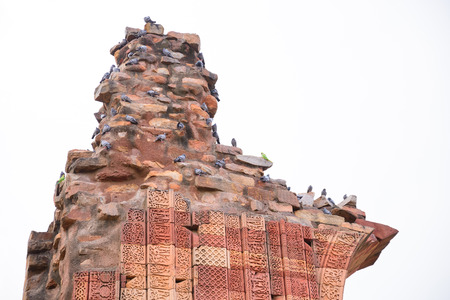 birds standing on broken pole in Qutub Minar site photo