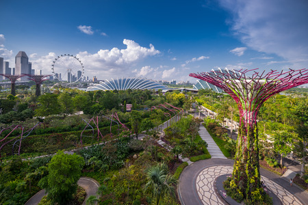Aerial view above Gardens by the Bay,Singapore