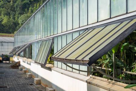 open windows: greenhouse glass windows open Stock Photo