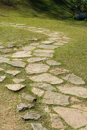 curve line: garden stone pootpath curve line