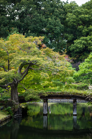 vertical composition: wooden bridge over the pond green maple trees leaves in Rikugien garden, Tokyo Japan, vertical composition Stock Photo