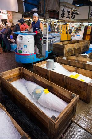 market worker driving trolley passing frozen tuna fish in Tsukiji market, Japan