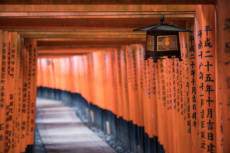 walking path way of red torii gates in Fushimi Inari temple Redakční