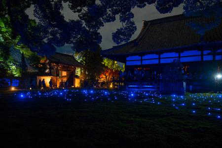 light up illuminated on display night scene in Shoren In temple in Kyoto, Japan