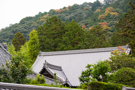 Classic japanese roof pattern in trees garden