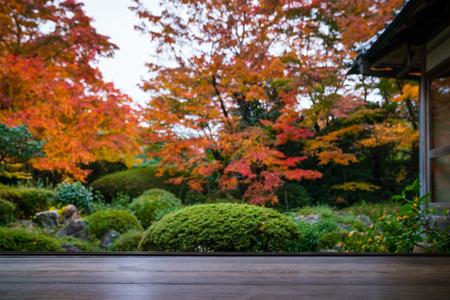 wooden balcony traditional japanese garden in autumn, selective focus