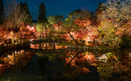 japanese classic style concrete bridge and torii gate in autumn red maple leaves garden