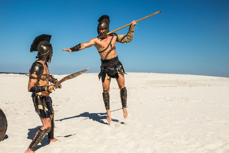 Dynamic confrontation of two ancient warriors in the desert