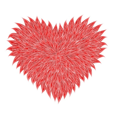 Fluffy Red Heart  on white background. Vector illustration  Vector