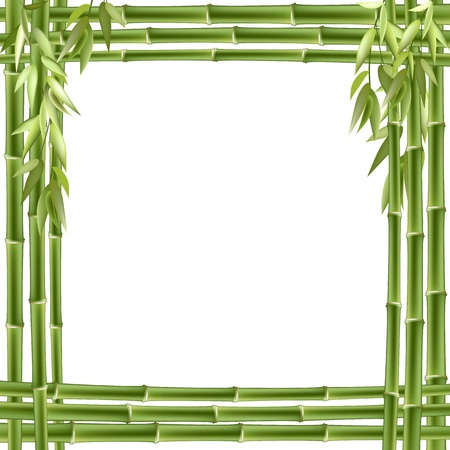 Bamboo frame. Vector background with copy space. Vector