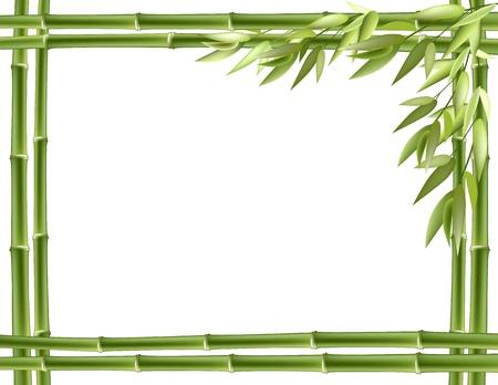 shoots: Marco de bamb�. Vector de fondo con copia espacio.