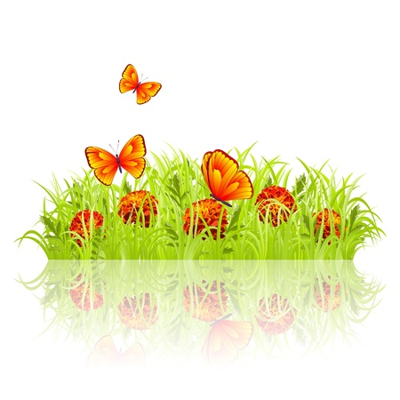 Green grass with red flowers and butterflies Stock Vector - 13470966