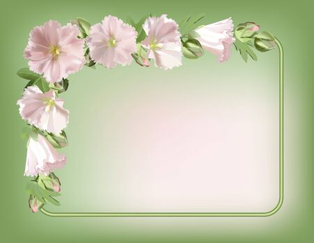 florescence: Floral frame with mallow flowers background