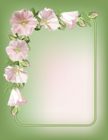 Floral frame with mallow flowers background Vector