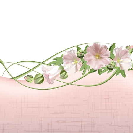 florescence: Floral card with mallow flowers background