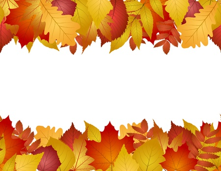 birch leaf: seamless with red and yellow autumn leaves