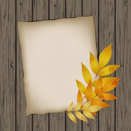 Paper sheet with autumn leaves on wooden background texture  Vector illustration Stock Vector - 15571584