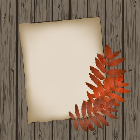 Paper sheet with autumn leaves on wooden background texture Stock Vector - 15584844