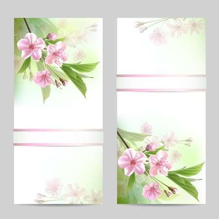 Set of spring banners with blossoming tree branch with pink flowers  Vector illustration Vector