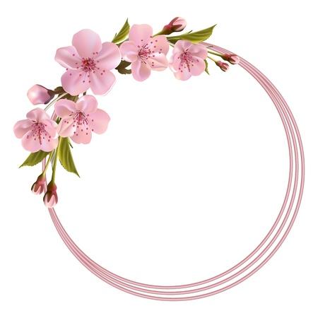 분홍색 벚꽃 꽃, 꽃 봉오리 및 복사 공간 봄 헤더
